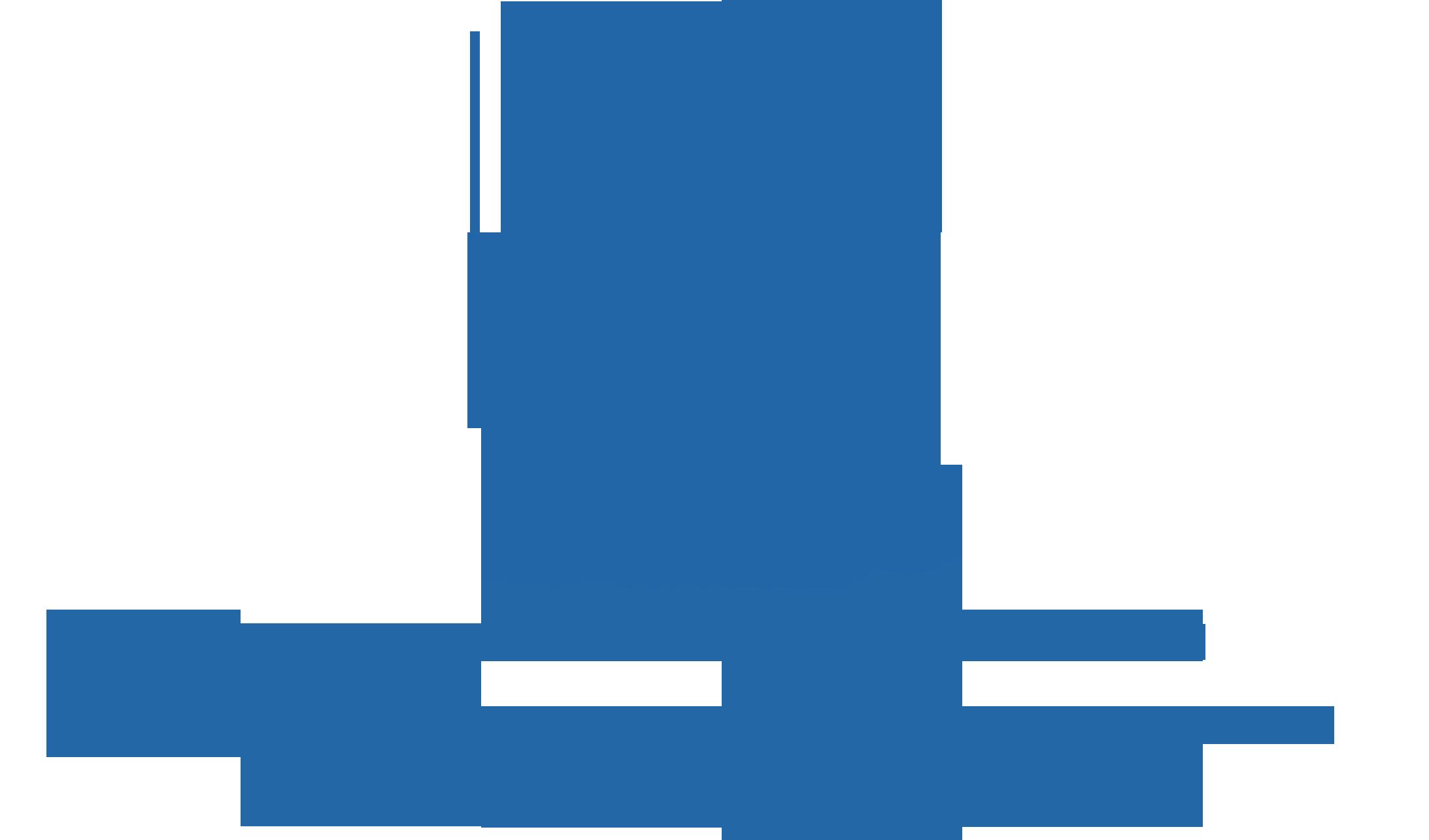 МГУ им. Н.П. Огарева